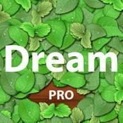 Dream Pro
